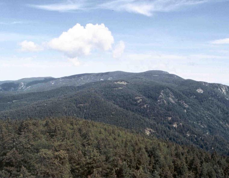 High peak 1989