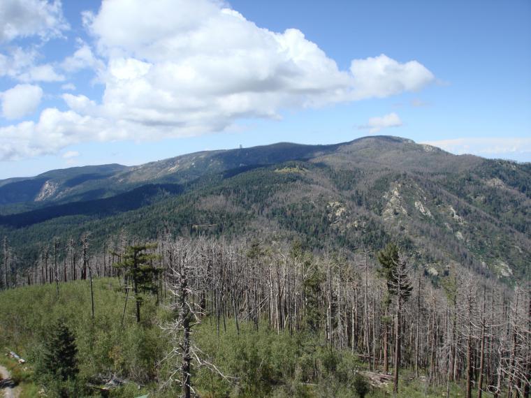 High peak 2007